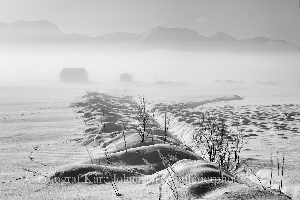 Frostrøyk ved Eidsfjorden II