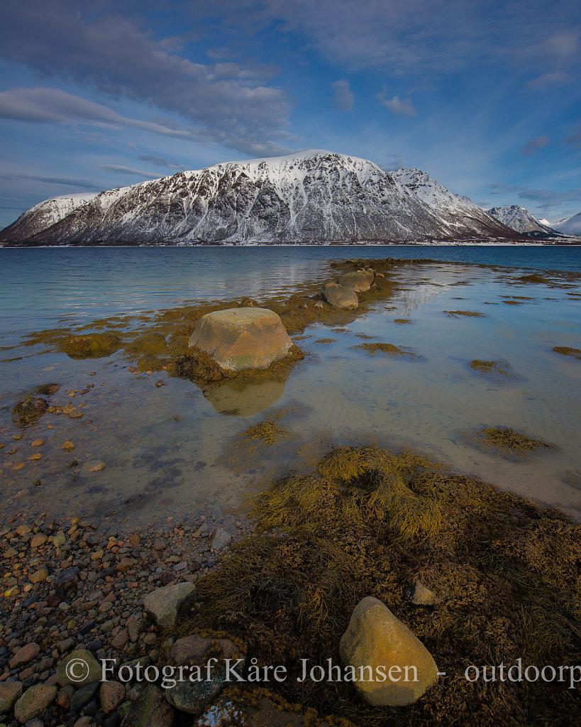 Raet i Forfjorden